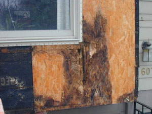 Water Damage Services Pacific Exteriors